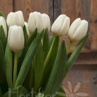 tulipanes blancos en base cristal hortiflor floristas 4